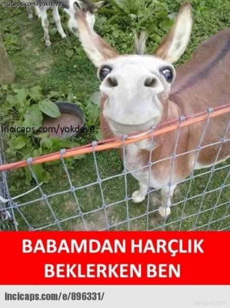En komik Ramazan Bayramı capsleri 3