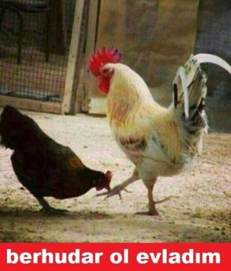 En komik Ramazan Bayramı capsleri 8