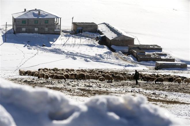 Doğuda Kış Manzaraları 10
