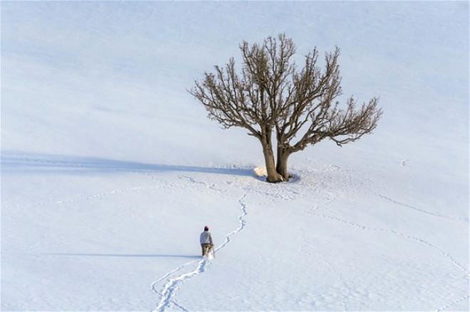 Doğuda Kış Manzaraları 2