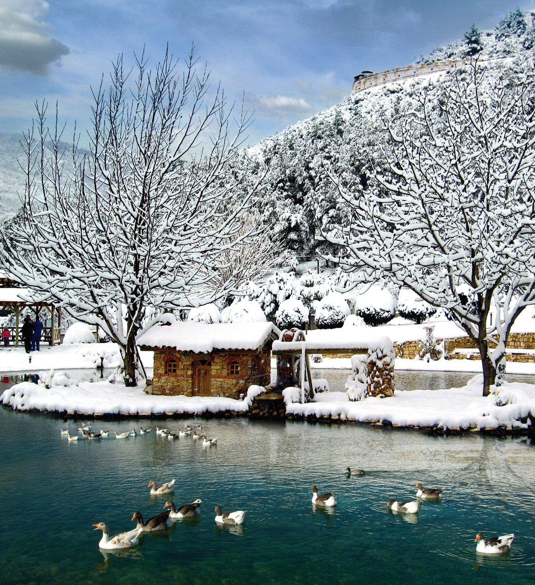 Denizli'den kar manzaraları 16