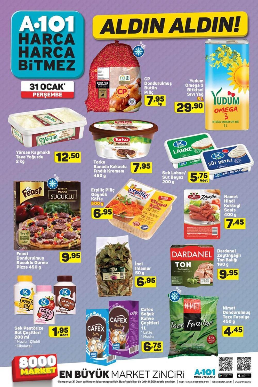 A101 31 Ocak Aktüel Ürünler Kataloğu Haftanın Fırsatları 7