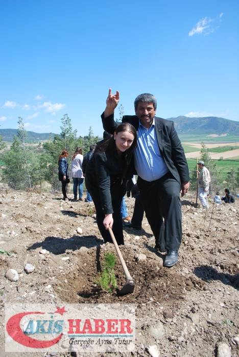 Başbuğ Türkeş Ormanına 300 Fidan Dikildi 1