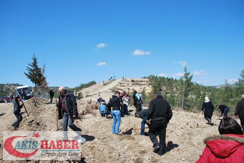 Başbuğ Türkeş Ormanına 300 Fidan Dikildi 24