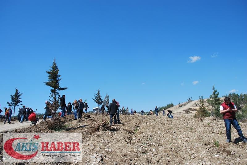 Başbuğ Türkeş Ormanına 300 Fidan Dikildi 33