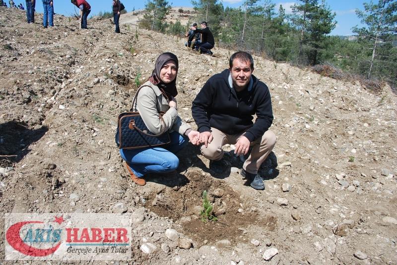 Başbuğ Türkeş Ormanına 300 Fidan Dikildi 38