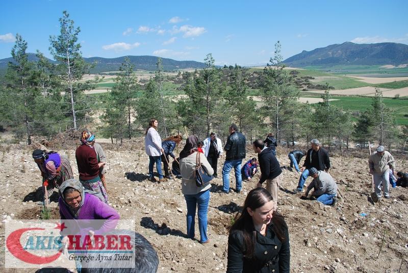Başbuğ Türkeş Ormanına 300 Fidan Dikildi 43