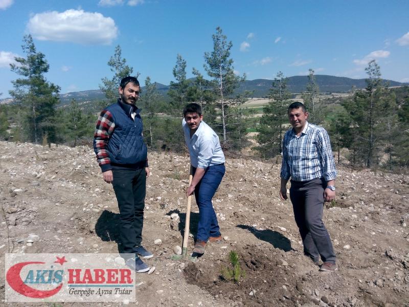 Başbuğ Türkeş Ormanına 300 Fidan Dikildi 50