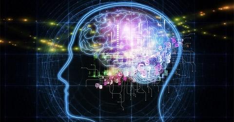 İnternet Beynimizi Nasıl Etkiliyor ?