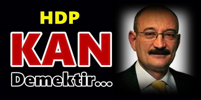 HDP, kan demektir