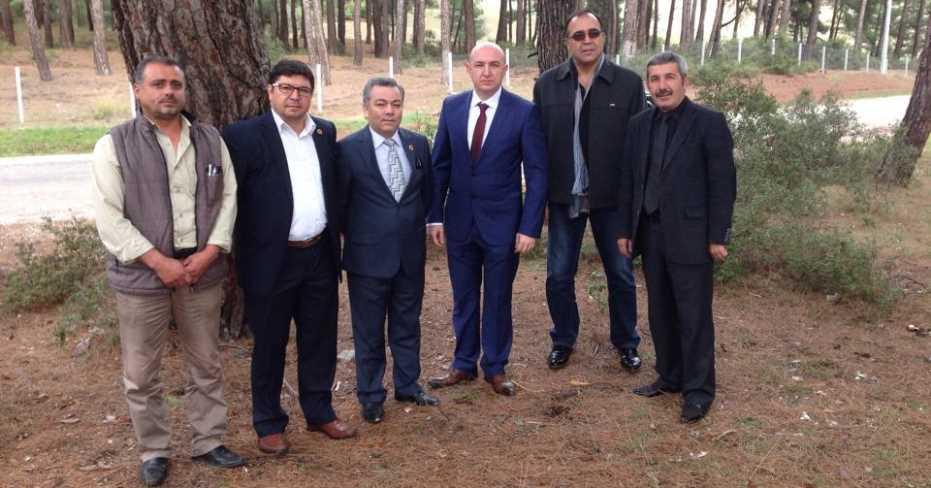 MHP: Tarihi Çınar Koruma Altına Alınmalı!