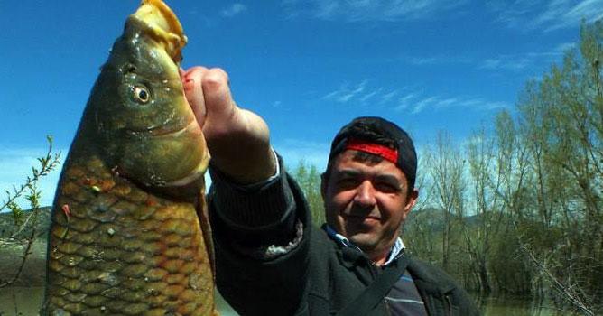 Balık Büyük Olunca Devlet Peşine Düştü!