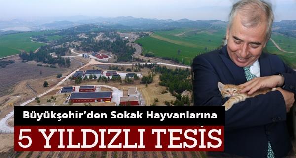 Bu Kompleks Türkiye'nin En Büyüğü