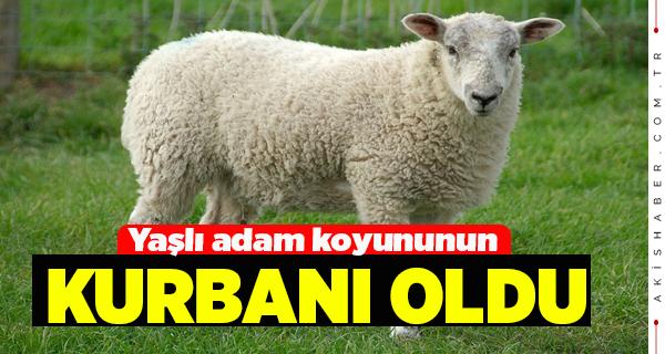Buldan'da Talihsiz Kaza