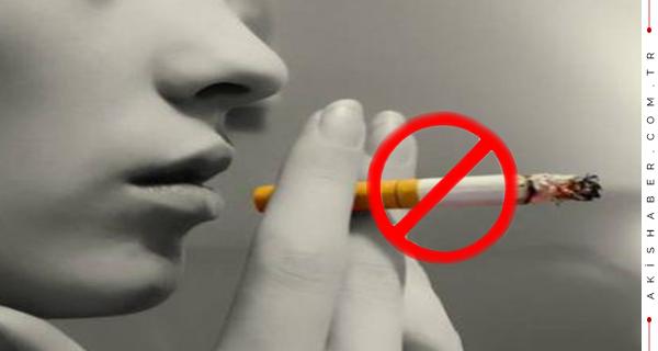 Yasaklar durdurmadı,Tütünde Rekor artış
