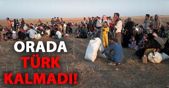 Son Türkmenler de Tel Abyad'ı Terk Etti