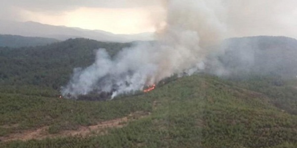 Muğla Köyceğiz yanıyor