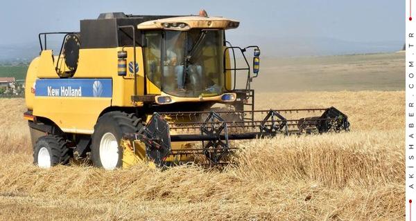 Bu Yıl Beklenen Buğday Rekoltesi Belli Oldu