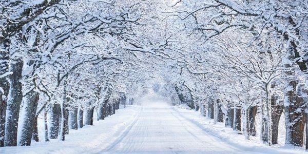 Coşkun : Bu kış kar beklemeyin!