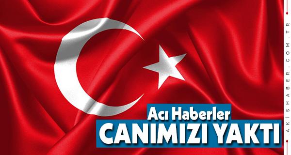 Başkan Örki'den Alçak Saldırıya Kınama