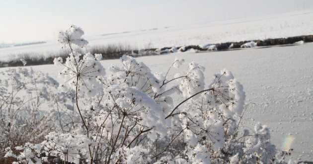 Dikkat Bugün Sibirya soğukları geliyor!