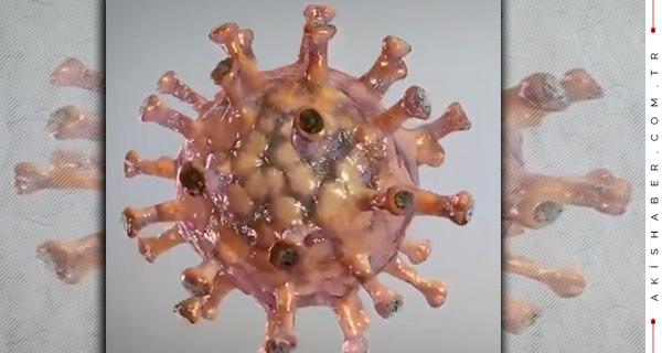 Büyük Şüphe:O İlaçlar Virüsün Gizli Müttefiki mi?