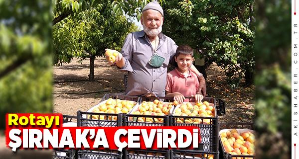 Denizlili Elmacı Dede'nin Mehmetçiğe Desteği Sürüyor