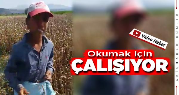 Şanlıurfalı Abdülkadir'in Videosu Sosyal Medyayı Patlattı