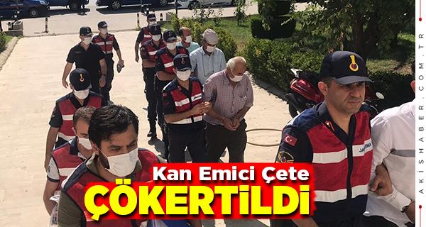 Denizli ve Muğla'da Tefecilik Operasyonu: 2 Tutuklama
