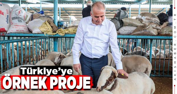 Başkan Zolan Hayvan Pazarında Esnafla Buluştu