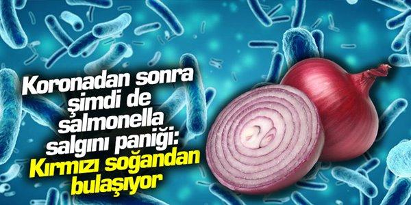 Koronadan sonra şimdi de salmonella salgını paniği: Kırmızı soğandan bulaşıyor