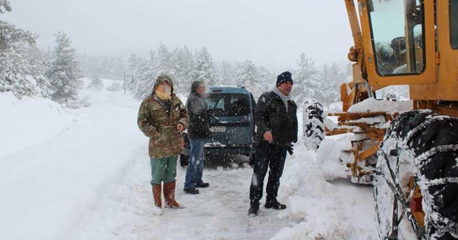 Dağda Mahsur Kalan Keçileri Çal Belediyesi Kurtardı