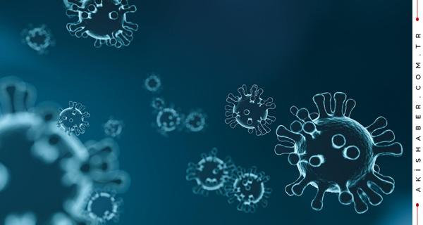 Koronavirüs normalleşme takvimi belli oldu