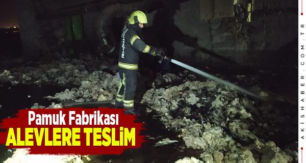 Denizli'de Fabrika Yangını Korkuttu