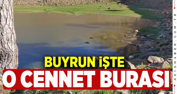 Kartal Gölü Beyağaç'ta mı Köyceğiz'de mi?