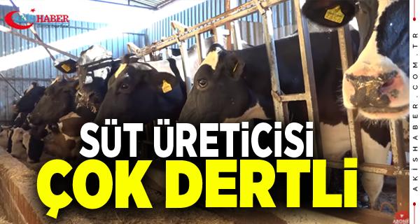 Süt Üreticisine Bir Dokunduk Bin Ah İşittik